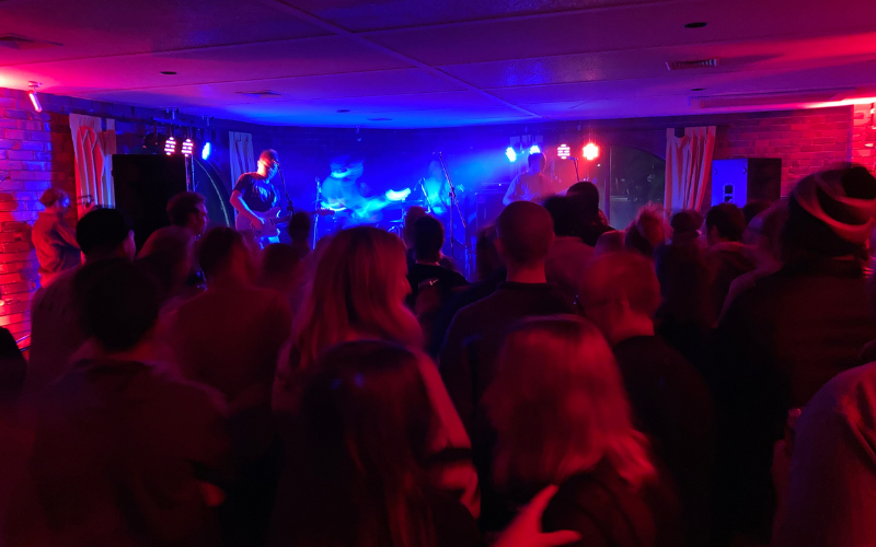 A crowd at an indoor live music gig